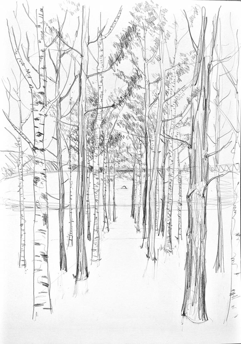 Djao-Rakitine A Fairytale Woodland by the Lake, Region of Moscow